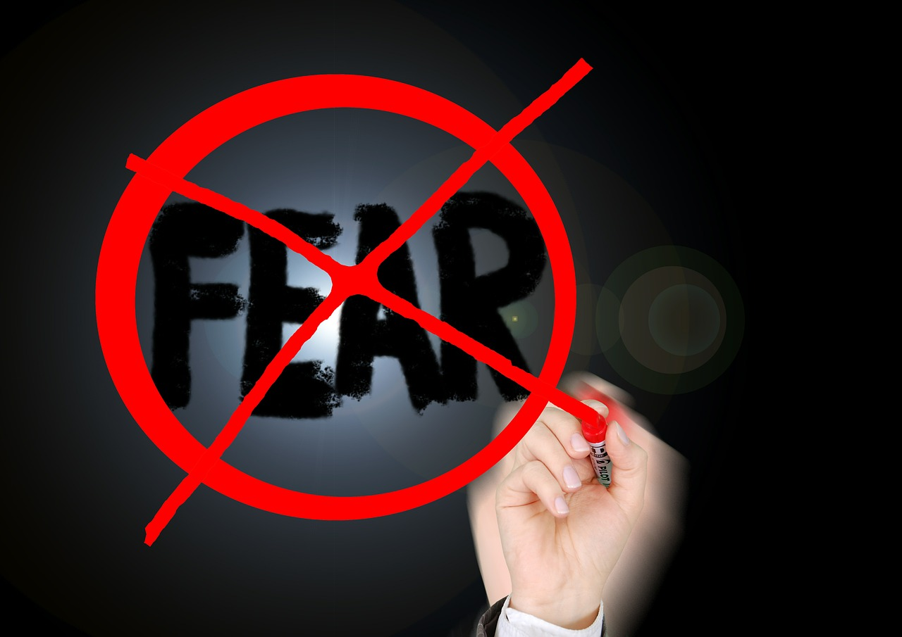 You must conquer your entrepreneurial fears in order to achieve your entrepreneurial goals.