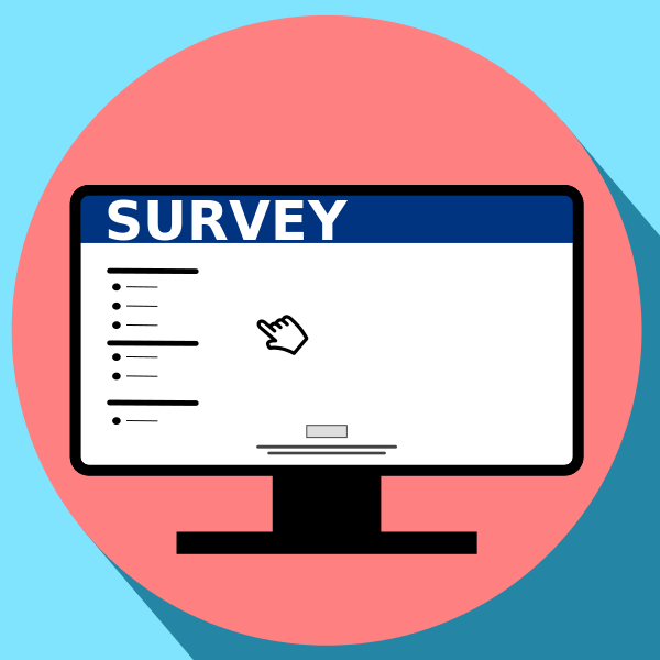 Surveys help you get an understanding of what your market needs (and wants).